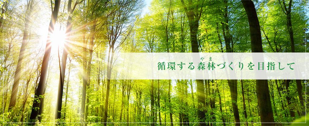 循環する森林づくりを目指して