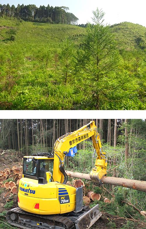 森林整備の現状と課題