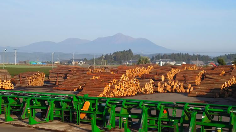 木材流通センター